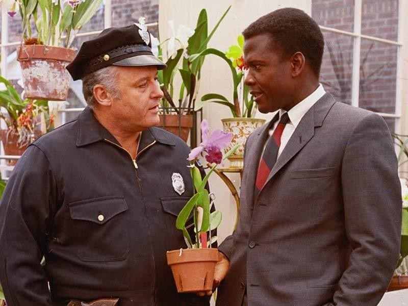 Detective Virgil Tibbs