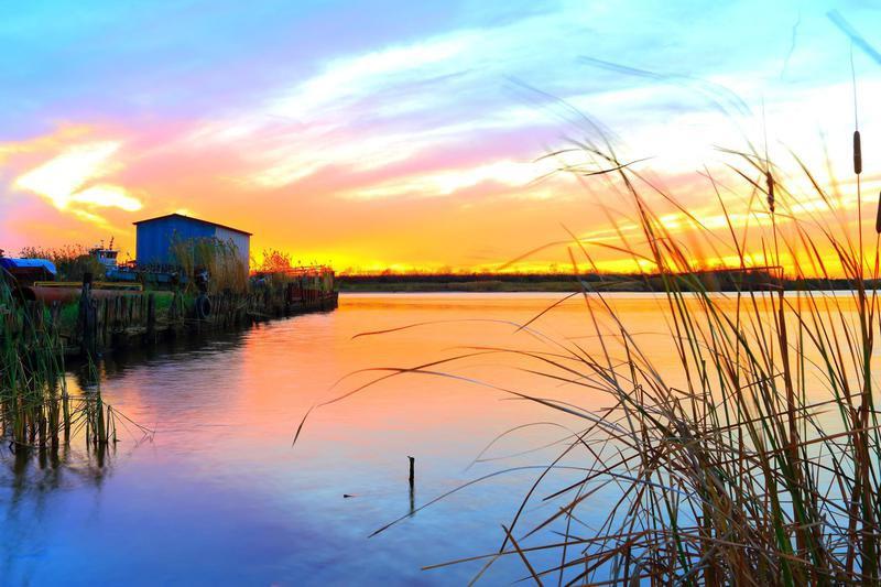 Louisiana Bayou Sunset