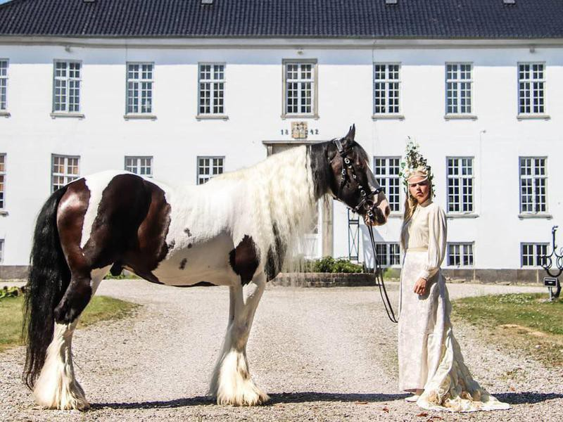 Young woman and Drum horse in front of Egholm Castle