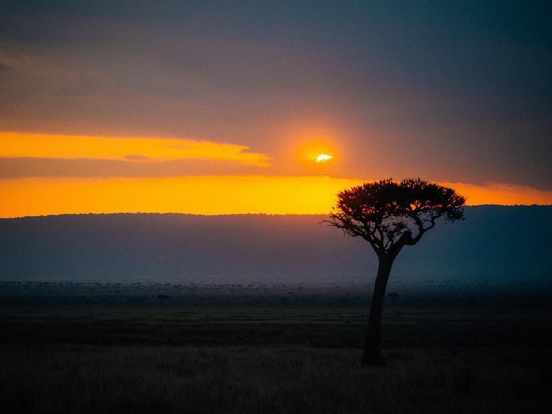 An Orange Sunset to Remember