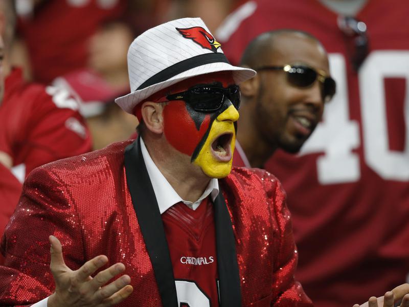 Arizona Cardinals fan