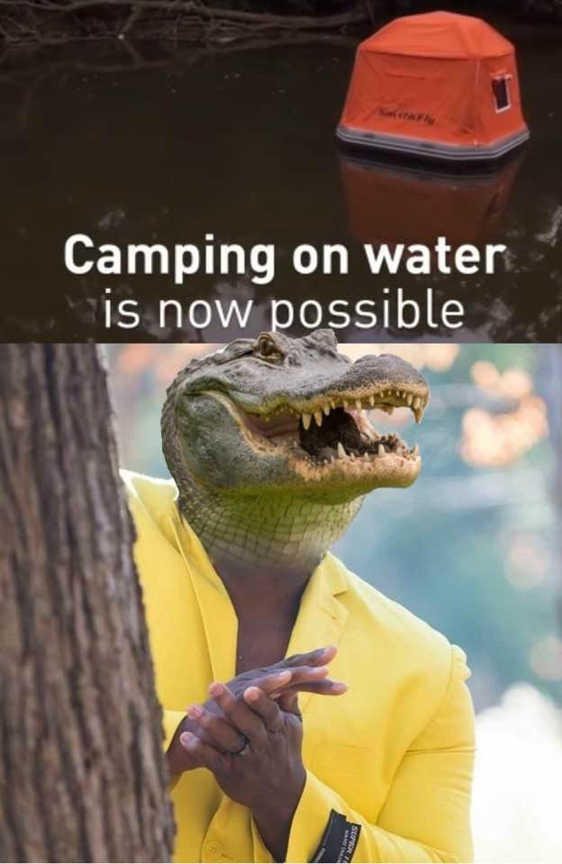 Funny aligator camping meme
