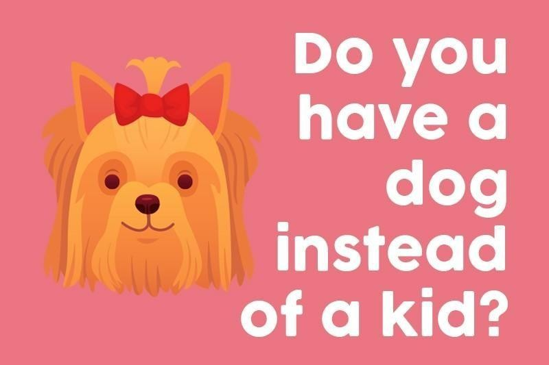 Do you have a dog instead of a kid?