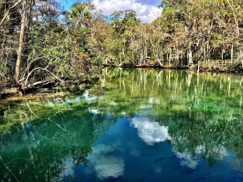 Crystal River Springs, Florida
