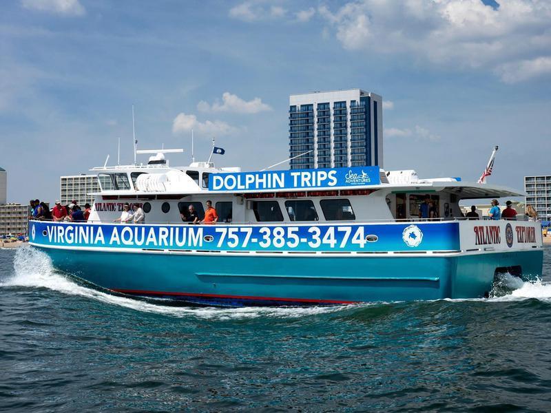 Virginia Aquarium & Marine Science Center Dolphin Boat