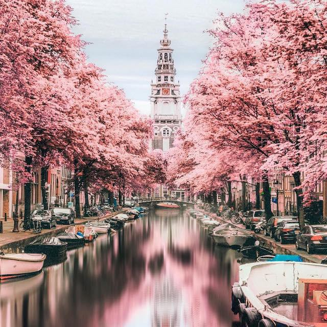 Amsterdam in the spring