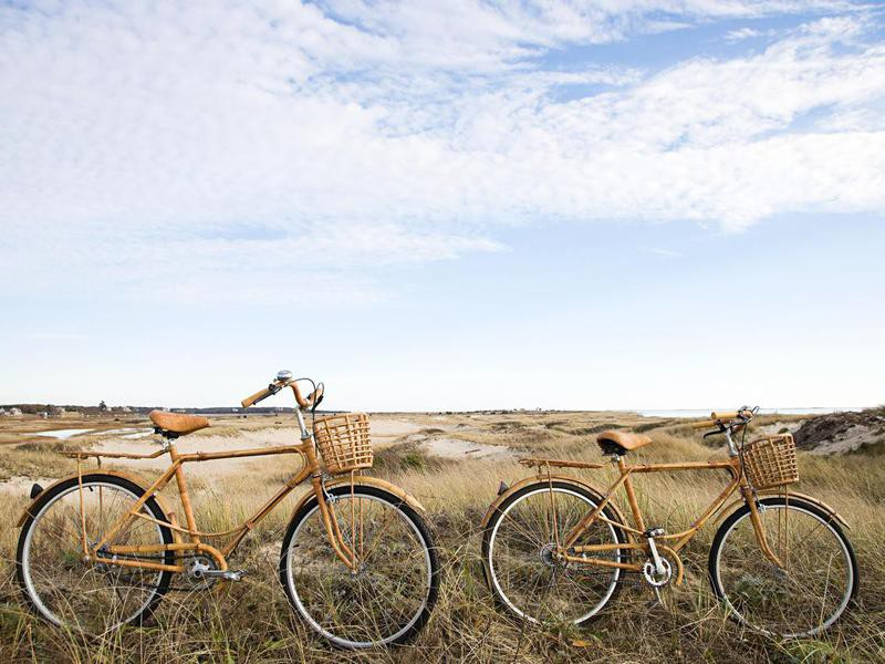 Bicycles near sand dunes in Cape Cod, Massachusetts