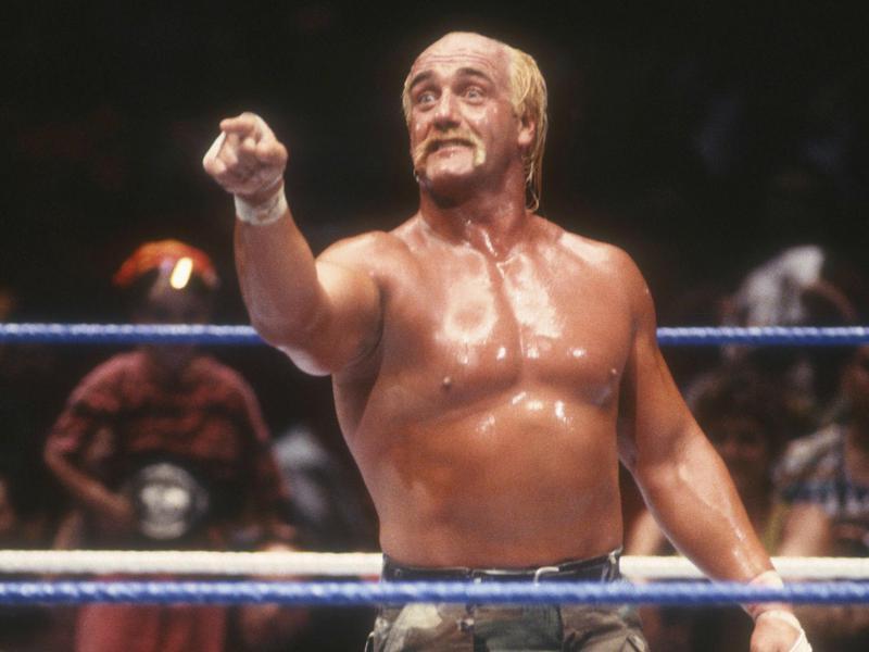 Hogan Pointing