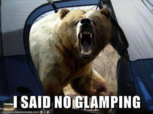 Bear camping meme