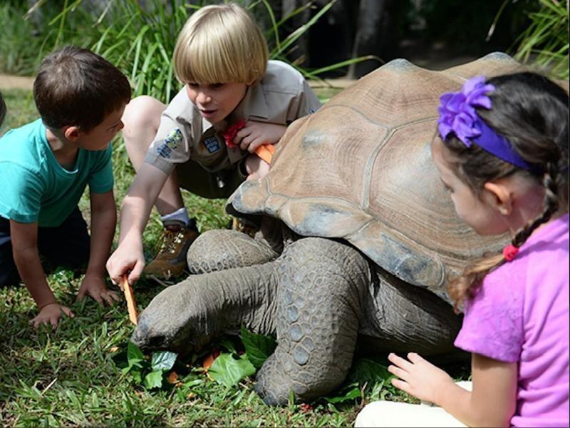 The Zoo as a Classroom