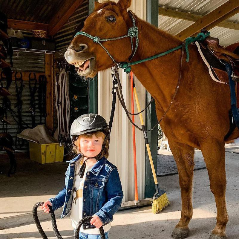 Little Girl with Smiling Horse