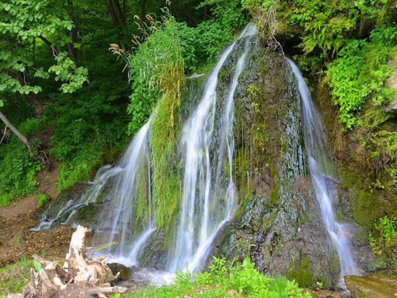 Malanaphy Spring Falls
