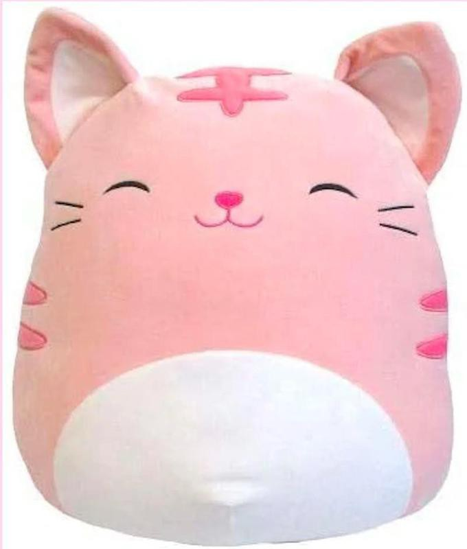Paulita the Pink Tabby Cat