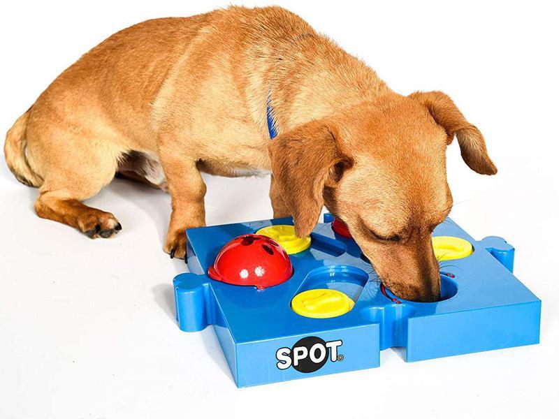 Spot Seek-a-Treat Flip 'N Slide Treat Dispenser for Dogs