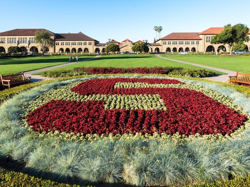 Stanford's Oval