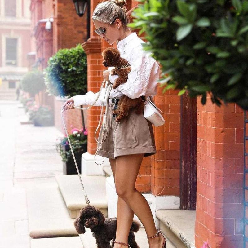 Stylish woman holding toy poodle