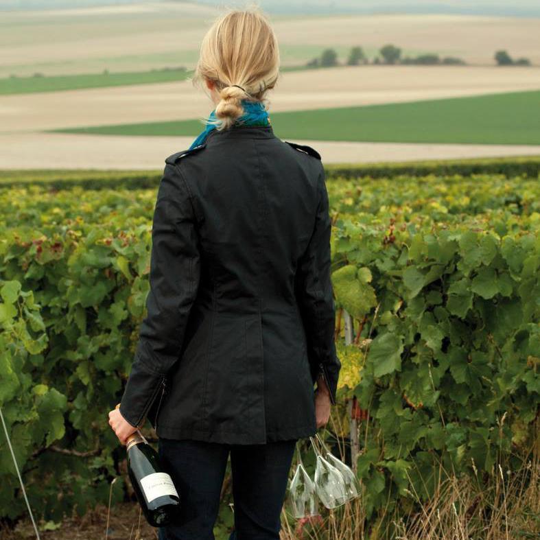 Laurent-Perrier vineyard