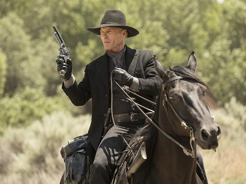 """The Man in Black from """"Westworld"""""""