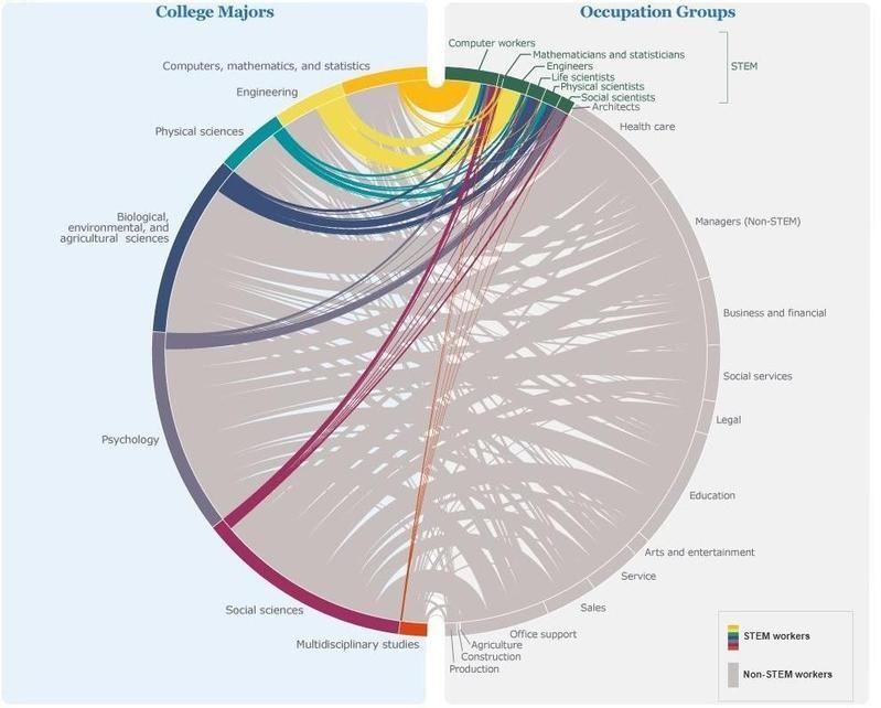 What fields female STEM graduates work in