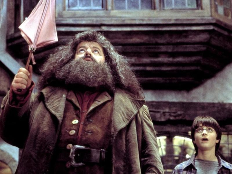 """Hagrid and Harry Potter in """"Harry Potter and the Sorcerer's Stone."""""""