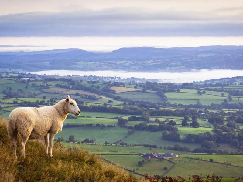 Monmouthshire, UK