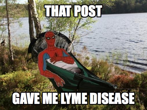 Spiderman camping meme