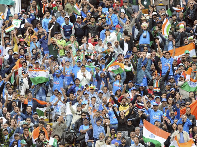 Indian cricket fans